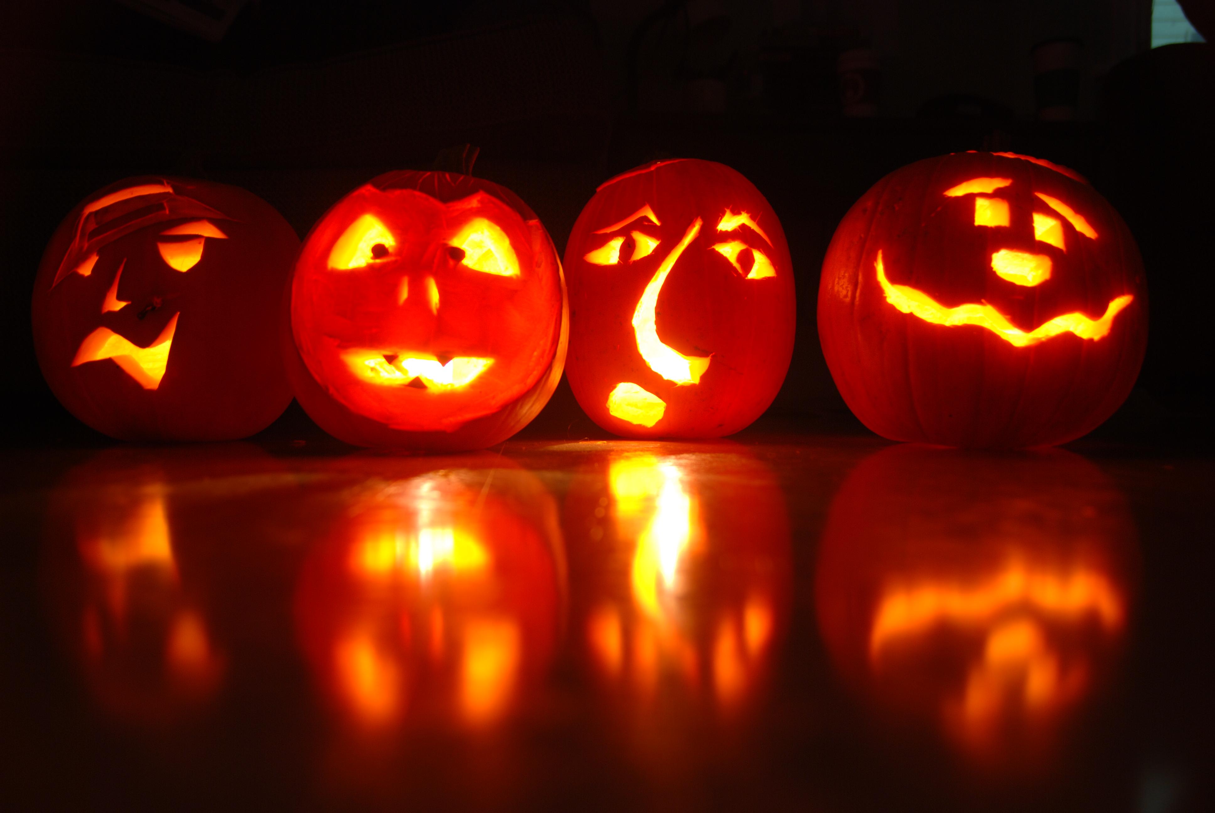 Aninimal Book: Make Your Own Scary Face for Halloween! Boooooo!   Letia ...